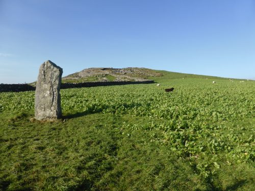 standing stone and cabbage field